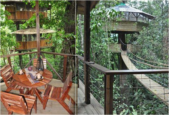 FINCA BELLAVISTA   TREE HOUSE COMMUNITY IN COSTA RICA