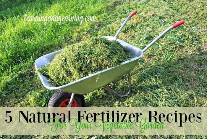5 Natural Fertilizer Recipes For Your Vegetable Garden With Images Natural Fertilizer Natural Garden Organic Gardening
