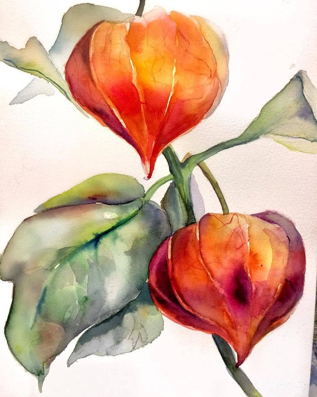 "Photo of WATERCOLOR ⭐ Art sharing page on Instagram: ""Watercolorist @ateshi_art . Tag us #watercolor_daily ."""