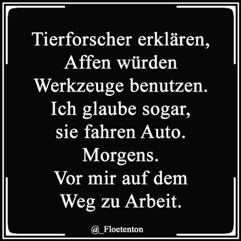 clips #lustigesprüche #lachflash #funnypics #fail #love #witze #schwarzerhumor