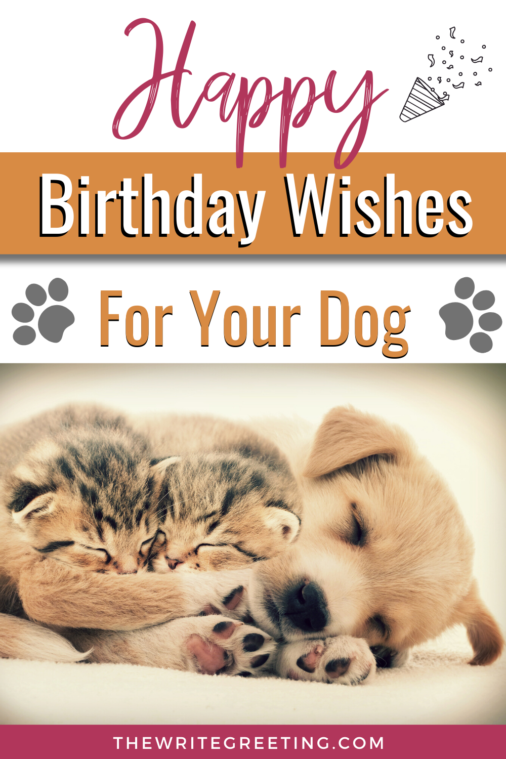 Happy Birthday Dog Lover : happy, birthday, lover, Absolutely, Awesome, Birthday, Wishes, Wishes,