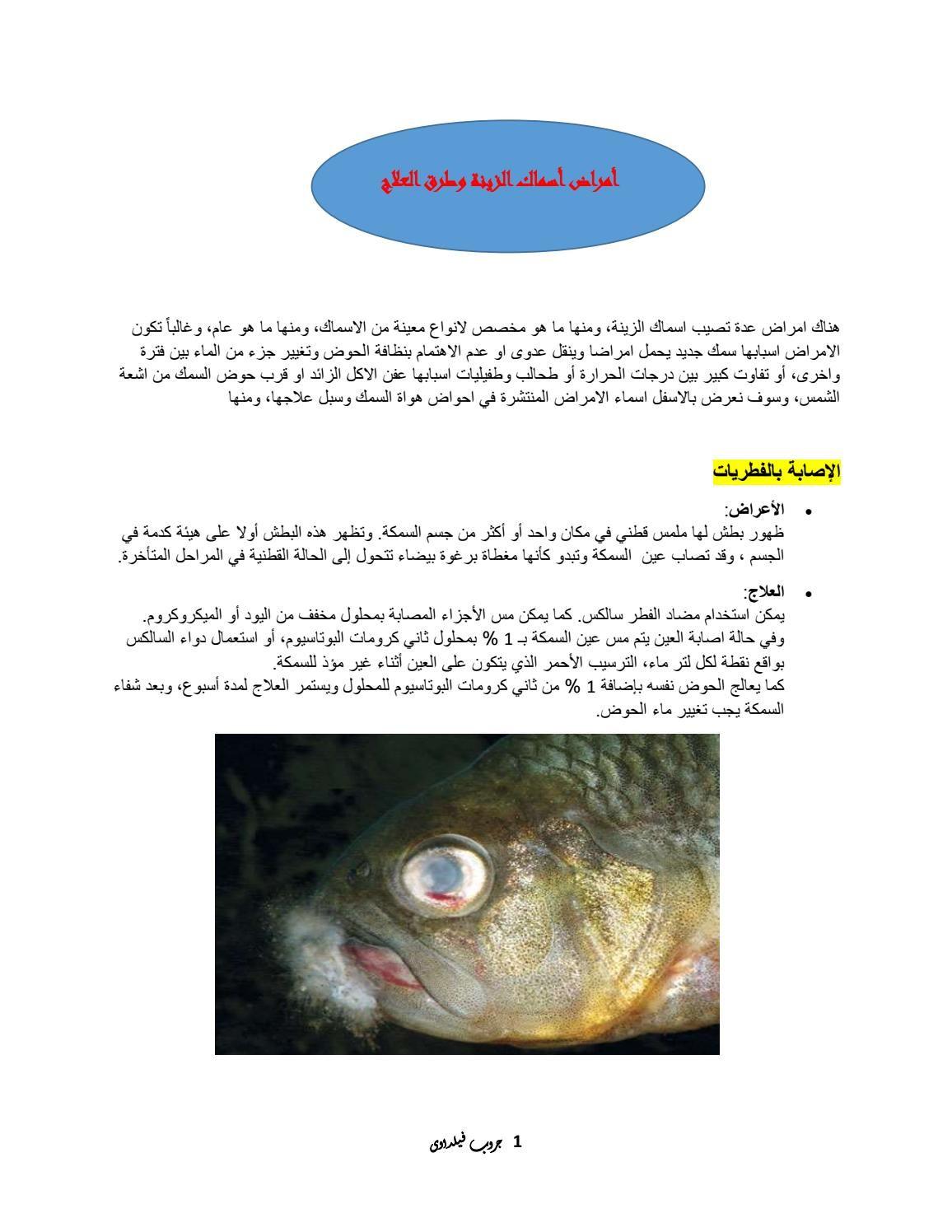 أهم امراض اسماك الزينة وطرق علاجها Pandora Screenshot Fish Pandora