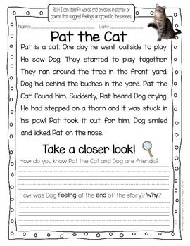 Take a Closer Look Close Reading for First Grade (FREEBIE