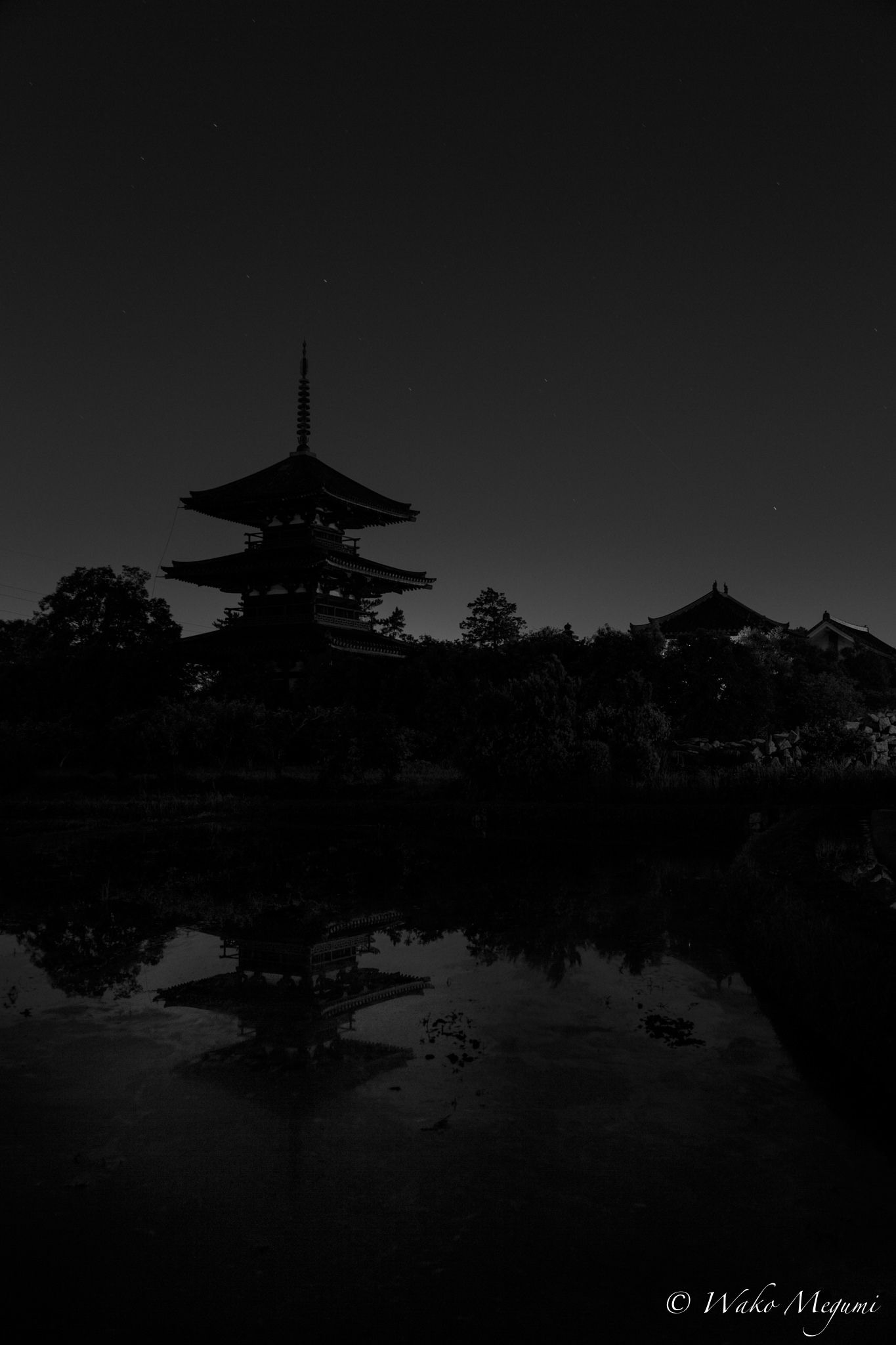 https://flic.kr/p/ntHCvx | 法起寺 夜景