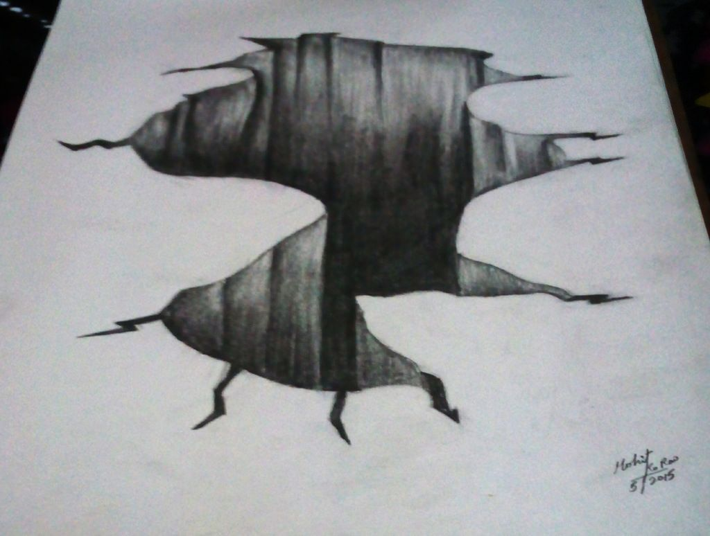 illusion 3d drawing pencil sketches illusions draw practice nature drawings optical onlineshop eye oeil trompe mkr sketching kumar rao mohit