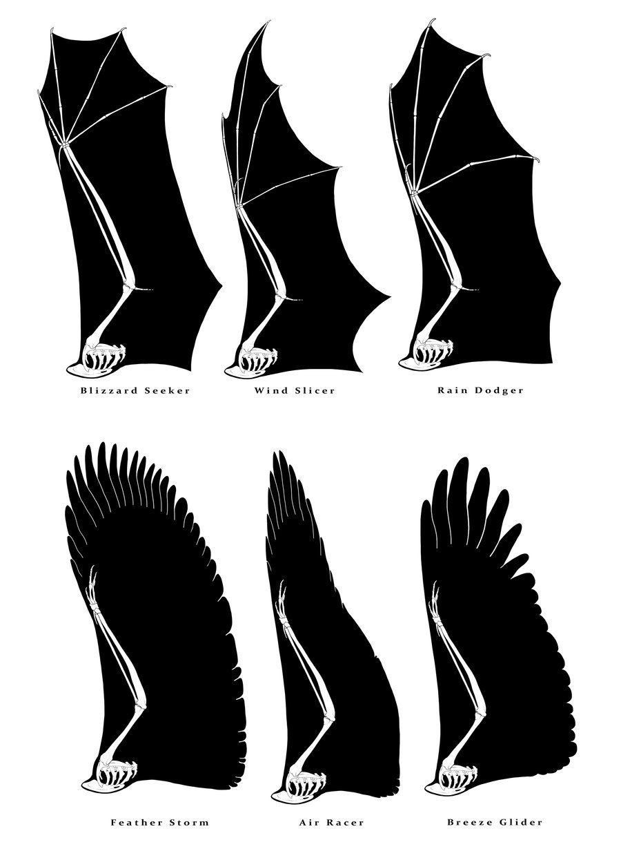 Dragon Wings by SammyTorres | Mythical_Dragons | Pinterest | Dragons ...