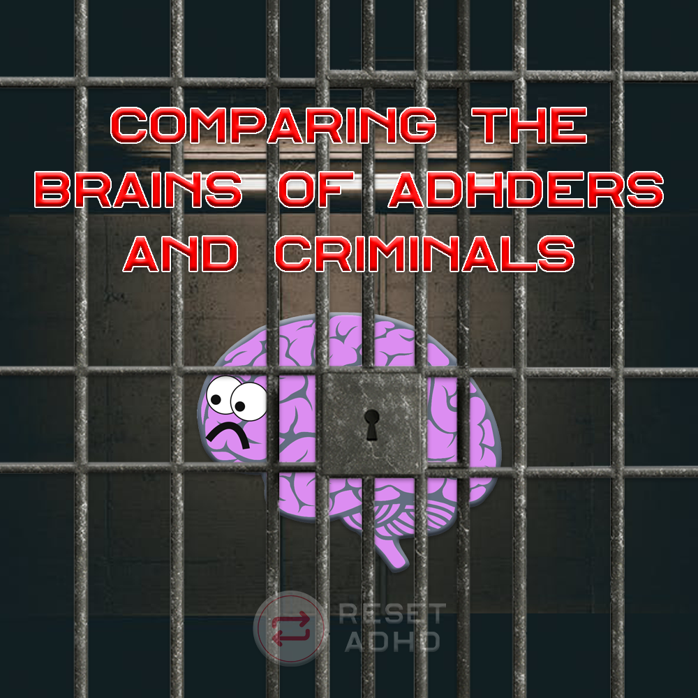Comparing the Brains of ADHDers and Criminals   Conduct ... Limbic System Adhd