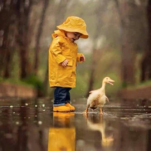 epaj17 | Ducks | Pinterest | Animal, Child and Babies