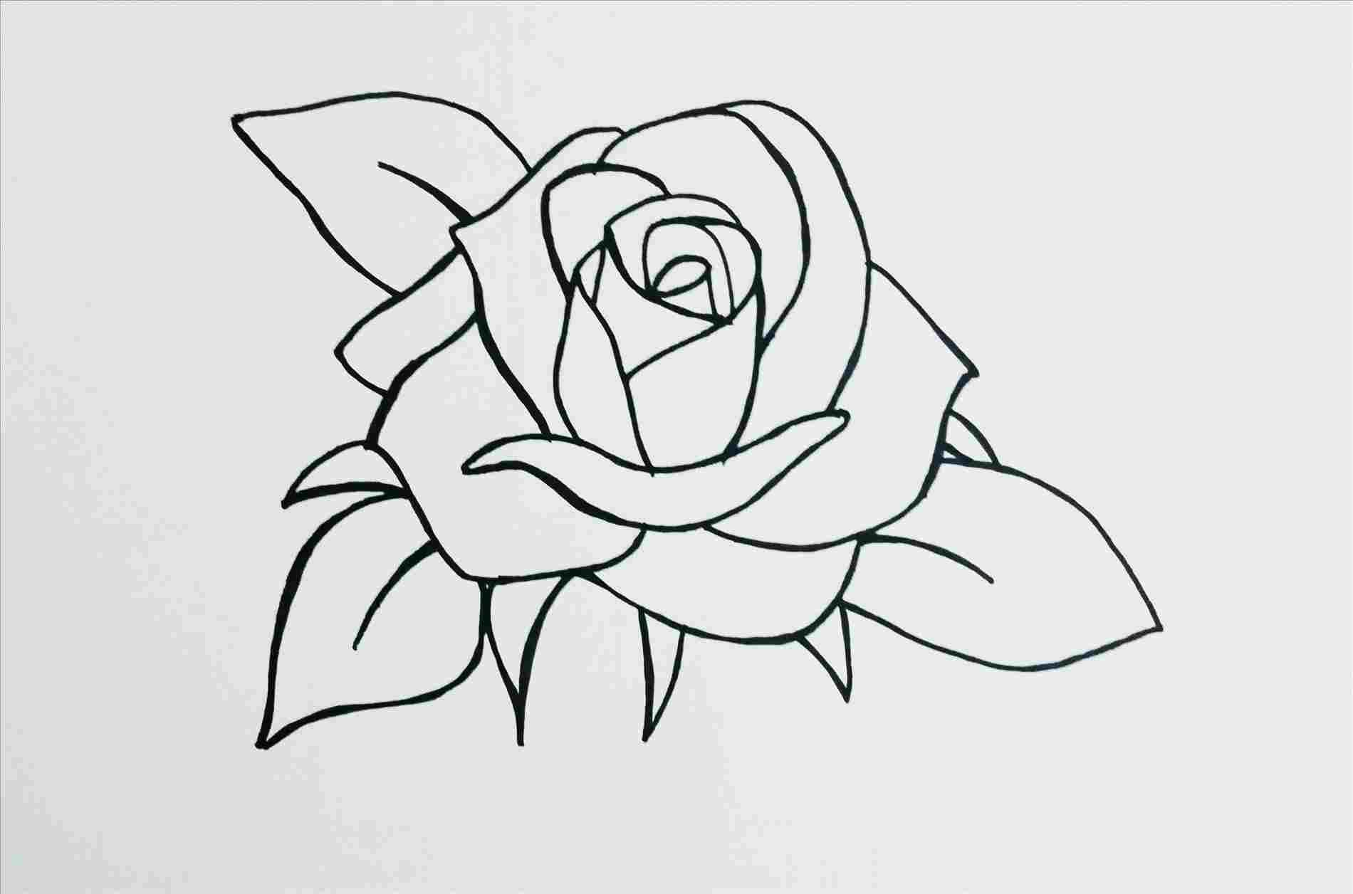 Cute And Pretty Easy Drawings Of Hearts Step By For Beginners Flowers Nature Artfairsinternational Rose Drawing Simple Pretty Easy Drawings Roses Drawing