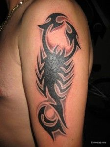 Tatouage Scorpion Homme Tatouages Bras Tattoos Tribal