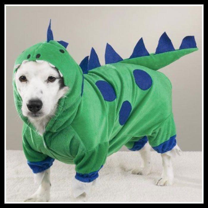 Dog Dinosaur Costume Inspired By Toy Story Rex Dog Dinosaur