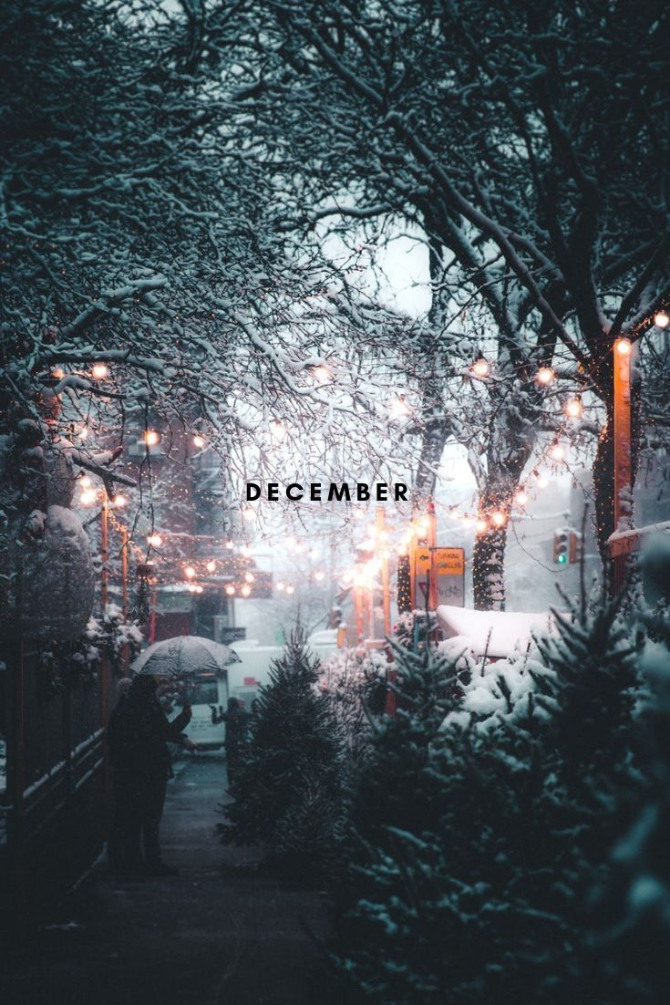 1st of December 2019 Cute christmas wallpaper, Wallpaper