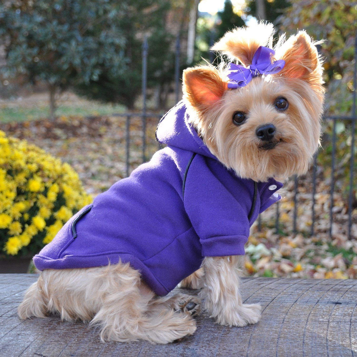 Fleece Lined Dog Pet Hoodie A Heavyweight Embroidered Sweatshirt A Purple A All Sizes Wow I Love This Check It O Dog Clothes Dog Design Dog Sweaters