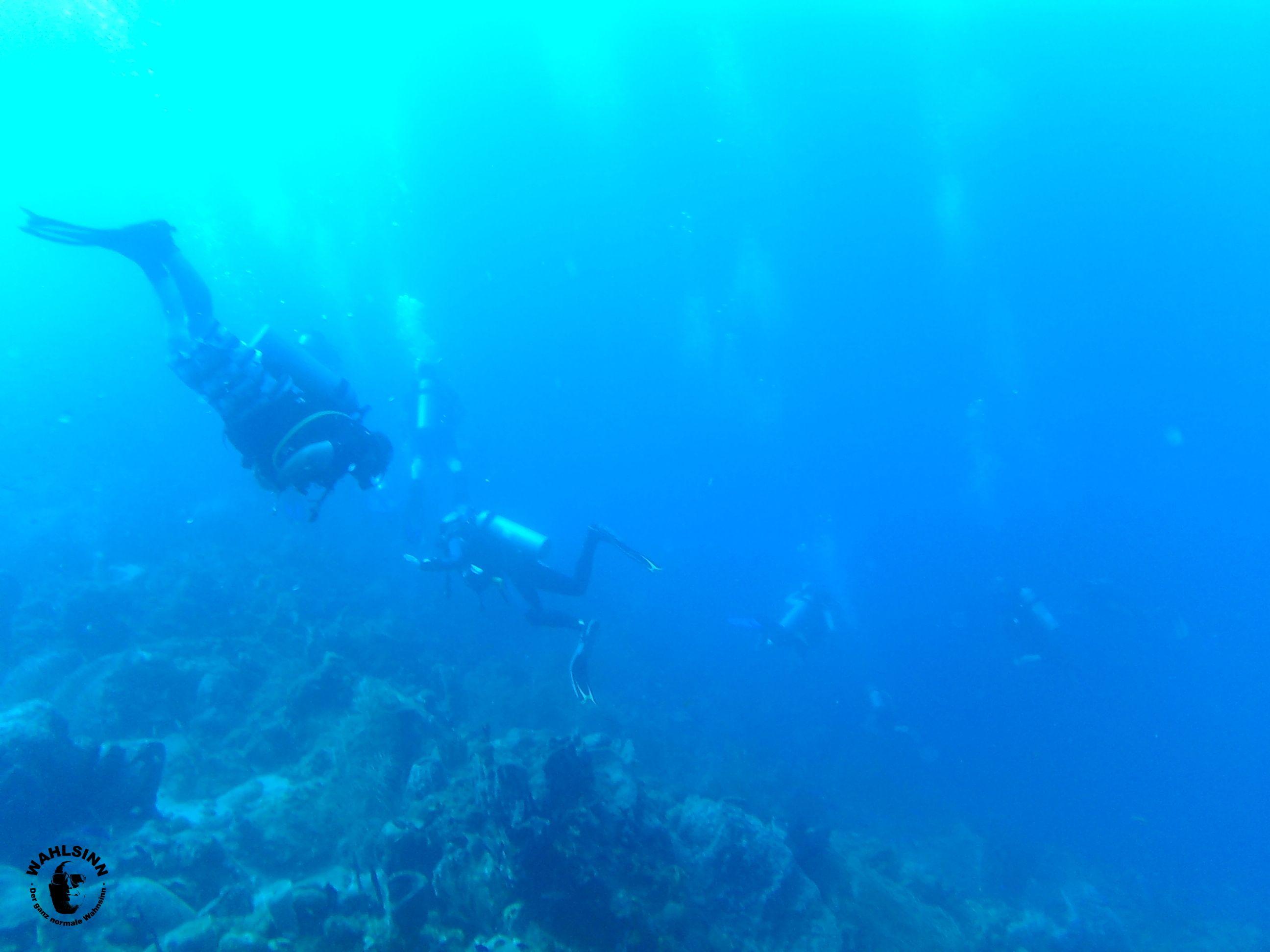St. Lucia - UNGLAUBLICHE Sichtweiten unter Wasser vor St. Lucia