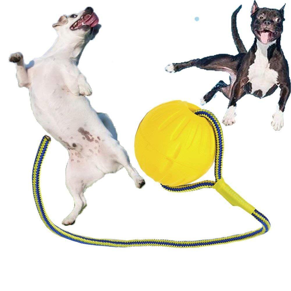 Sforza Rope Ball Dog Toy Swimming Indestructible Floating Dog