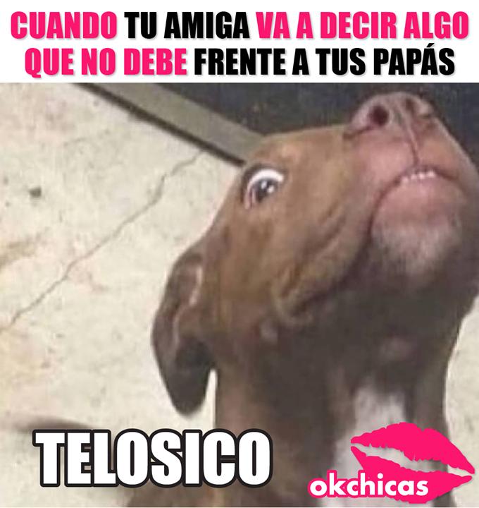 Callate Callate Telosico Pendeja Memes Divertidos Meme Gracioso Memes