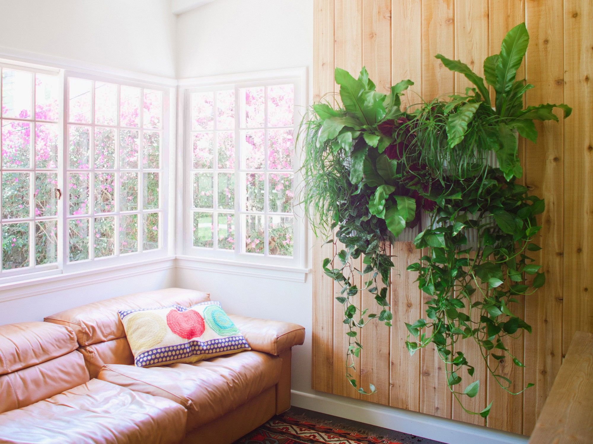 Hanging Wall Planter living wall planter - living wall planters | woolly pocket