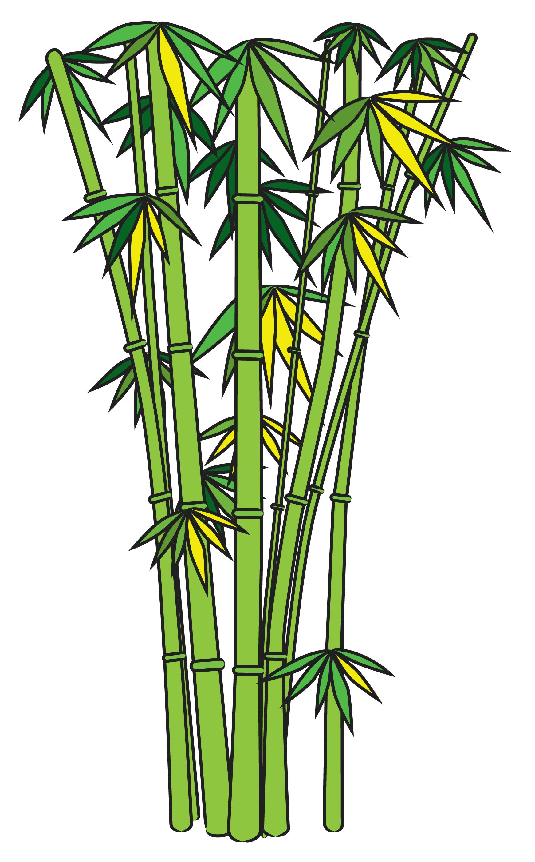 How To Draw Bamboo Tree Drawings Pencil Bamboo Drawing Bamboo Art