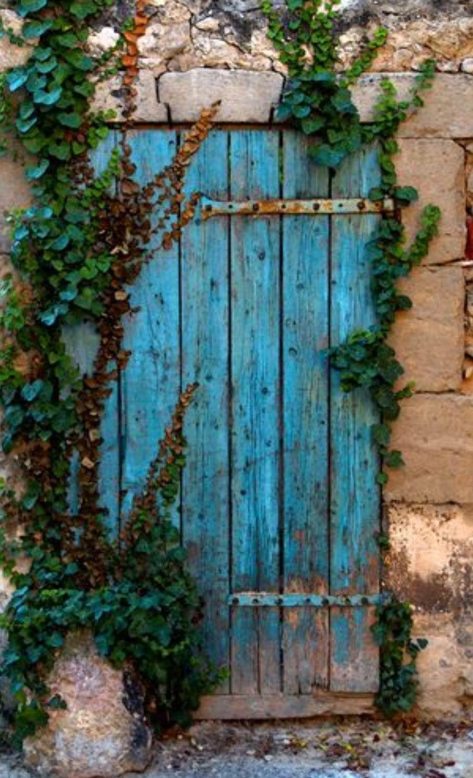 Pin By Westside Neighbor On Beautiful Blues Beautiful Doors Old Doors Doors