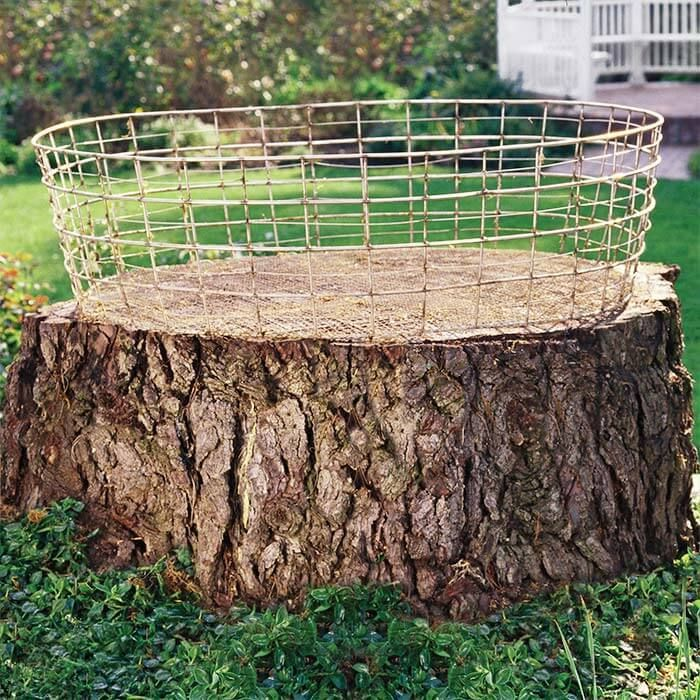 15+ Creative Tree Stump Decorating Ideas In Landscape