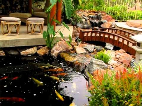 Good Traditional Japanese Koi Pond And Stream Landscape By San Diego Ponds