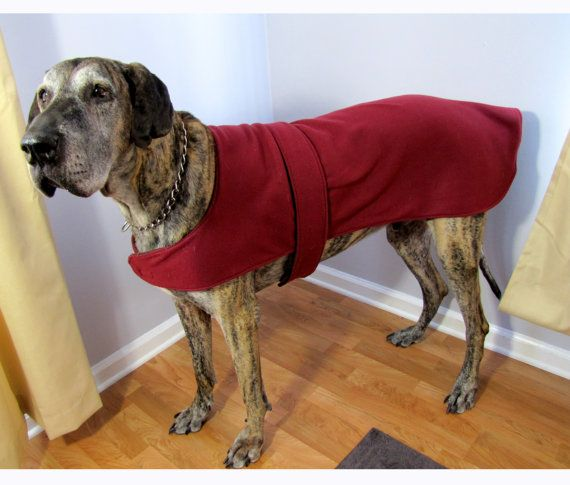 What A Cutie Custom Extra Large Fleece Dog Jacket Coat Great Dane