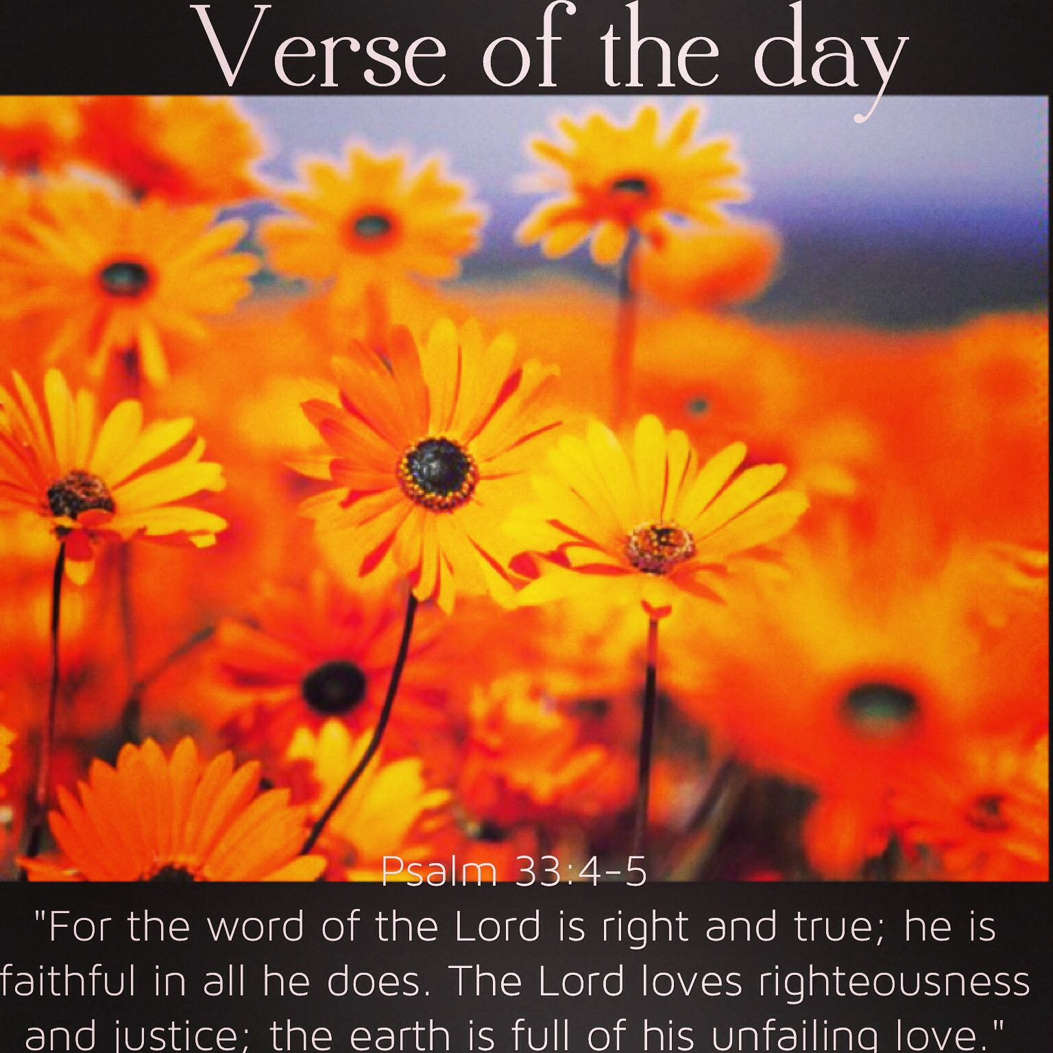 Verse Of The Day Psalm 33 4 5 Niv For The Word Of The