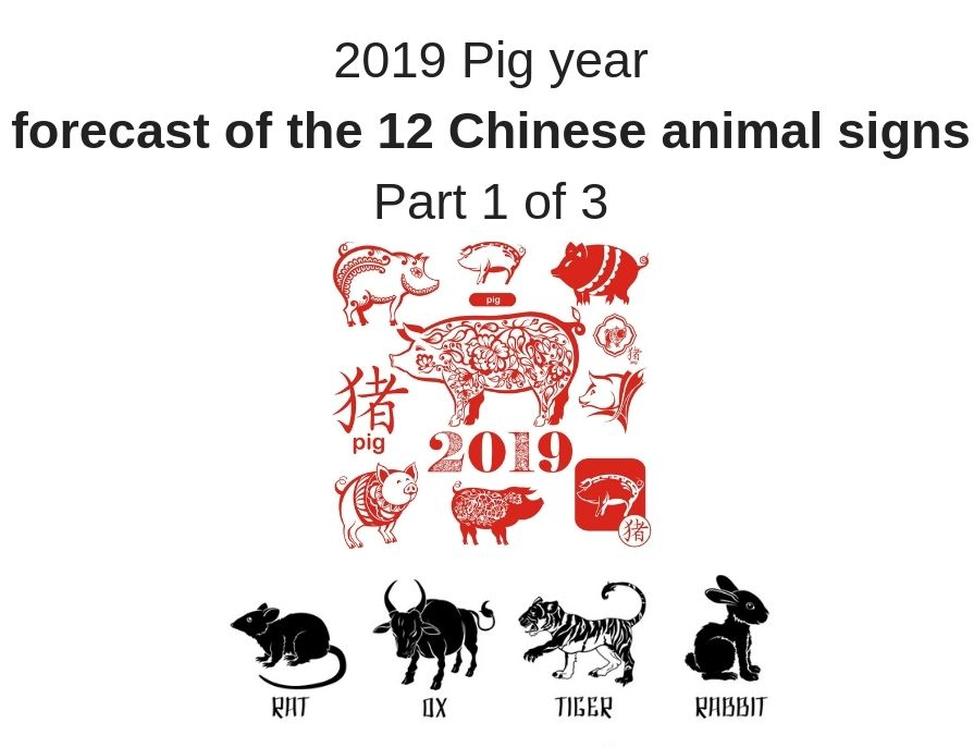2019 Pig Year Chinese animal sign analysis Part 1 of 3