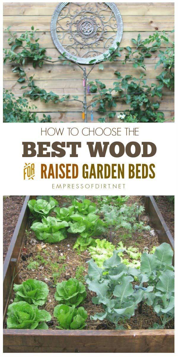 Best Wood For Raised Garden Beds Gorgeous Gardening