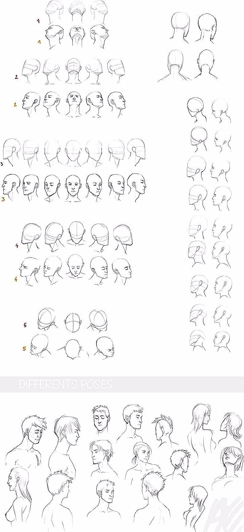 3D Drawing Tips reference head face pose perspective side view male female#drawing #face #female #male #perspective #pose#drawing #face #female #femaledrawing #male #perspective #pose #reference #side #tips #view
