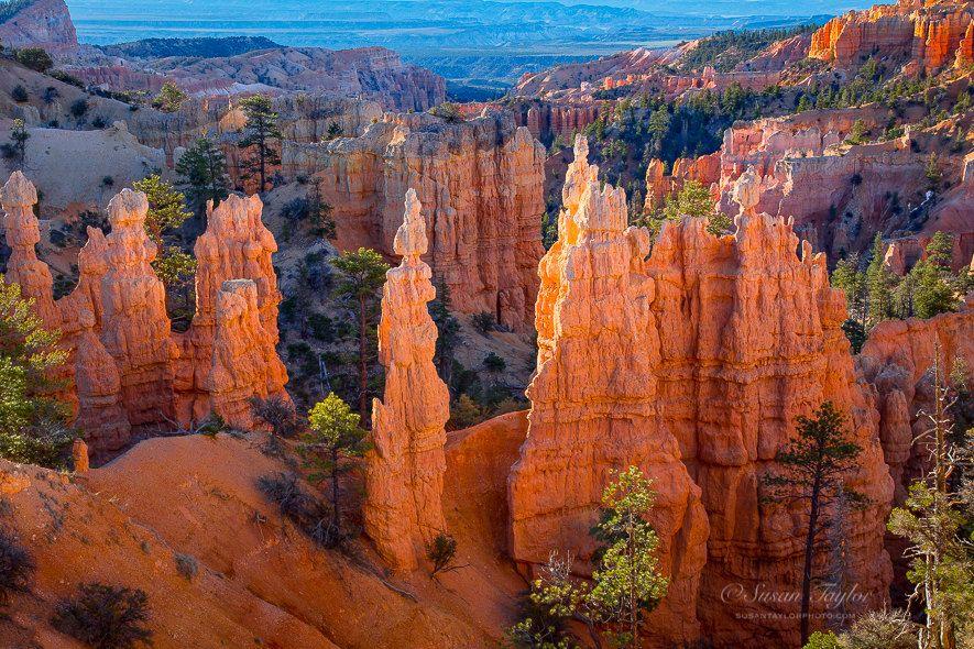 Zion Canyon Wall Utah Photography Southwest Landscape