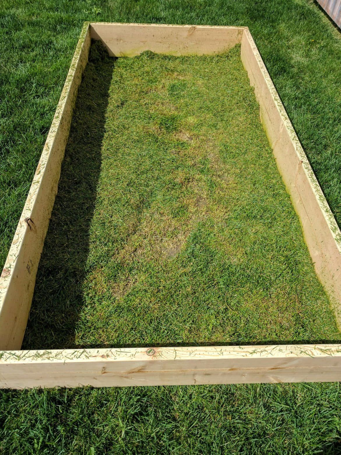 How To Build Raised Garden Beds An Easy Diy Design In 2020 Building A Raised Garden Diy Raised Garden Raised Garden Beds Diy