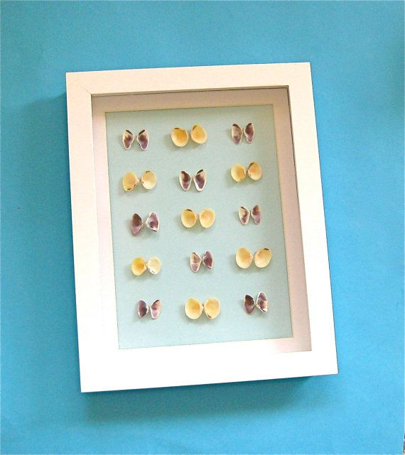 Beach Theme Home Decor Shadow Box Beach Gift: Butterfly Seashell Shadow Box