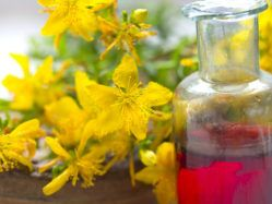 St. John's wort oil is one of my most used home remedies! It is a superb massage oil; but it also helps with cuts, scrapes, minor burns, sore muscles and growing pains.