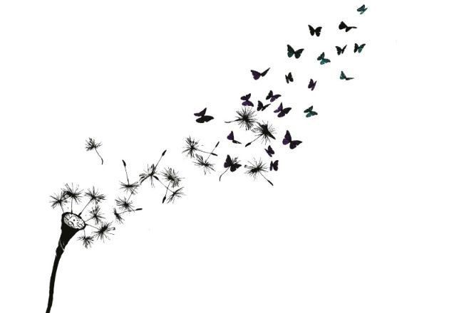 117dfbe2a Fly away/ fly into butterflies | Tattoos | Butterfly tattoo designs ...