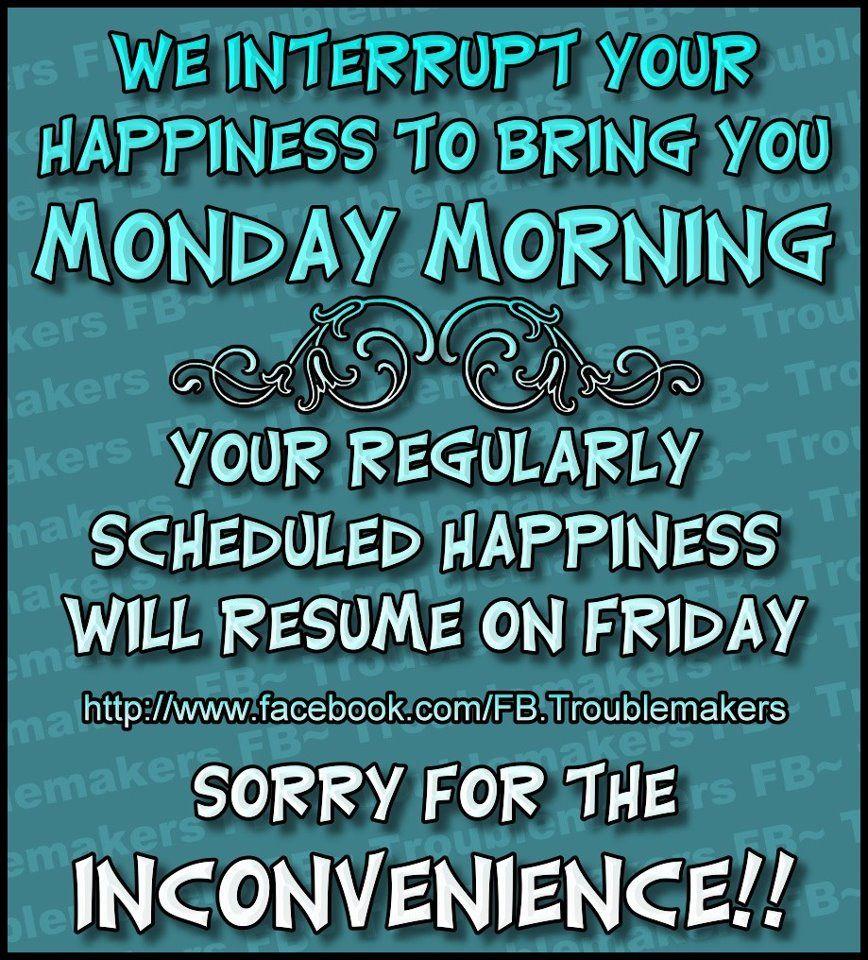 Great Monday Morning Meme