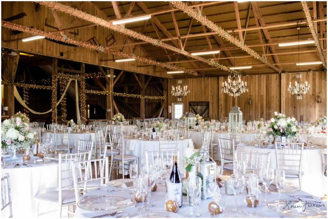 outdoor weddings near akron ohio%0A Brookside Farm  Louisville Ohio November Wedding   Barn decorated for  Reception with wine bottles and
