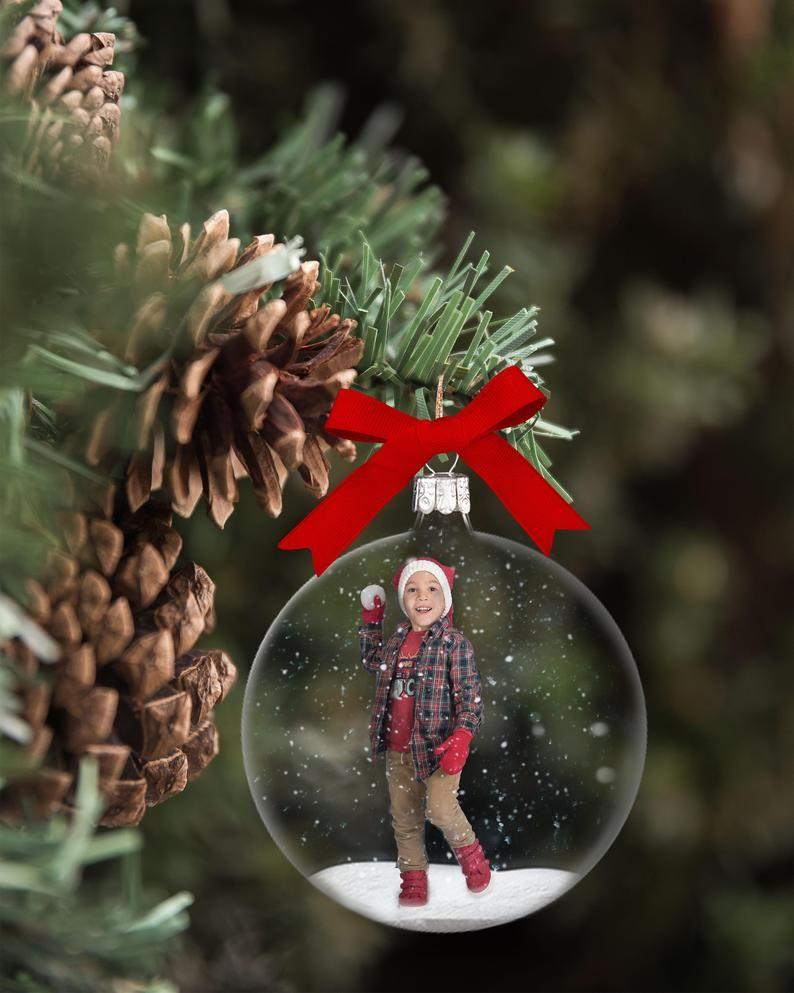Snowglobe Christmas Digital Pinecone Branch -