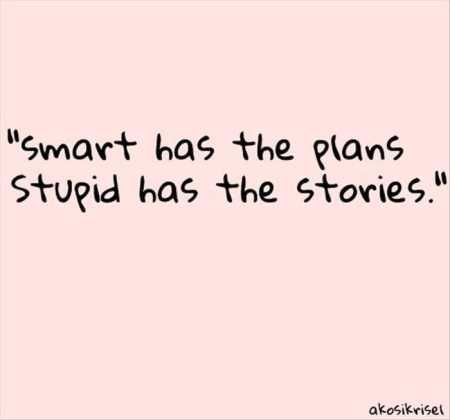 Stupid Quotes Pin😌bozhi😌 On Quotes  Pinterest  Funny Signs