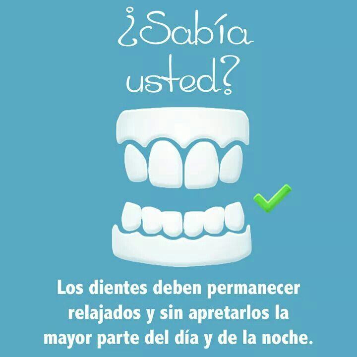 30 Ideas De Ortodoncia Ortodoncia Odontología Dental