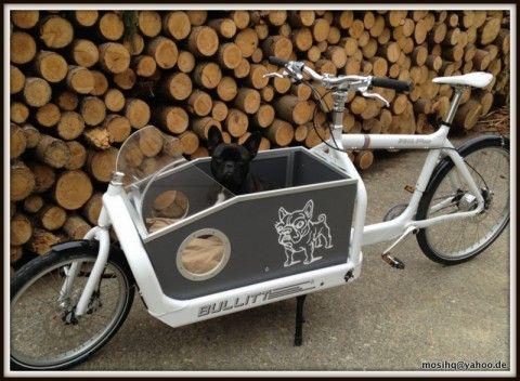 Cargo Bike Dog Taxi Lastenfahrrad Bullitt Bike Hund Fahrrad