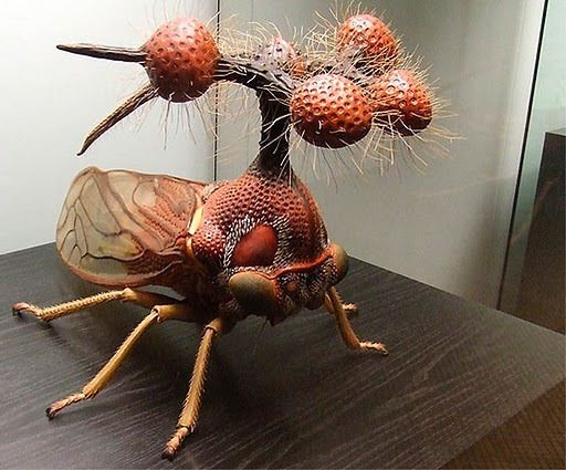 Yep, I had to look this one up before I repinned it ... and it is for real.....the Brazilian tree hopper