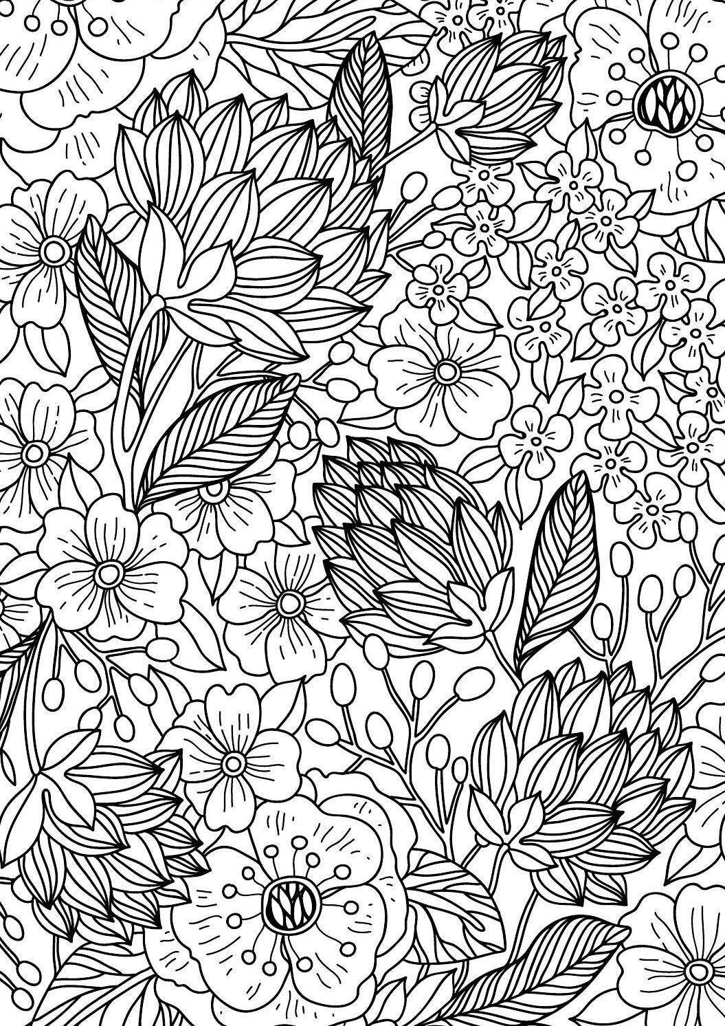 Colour Calm 04 Sampler Flower Coloring Pages