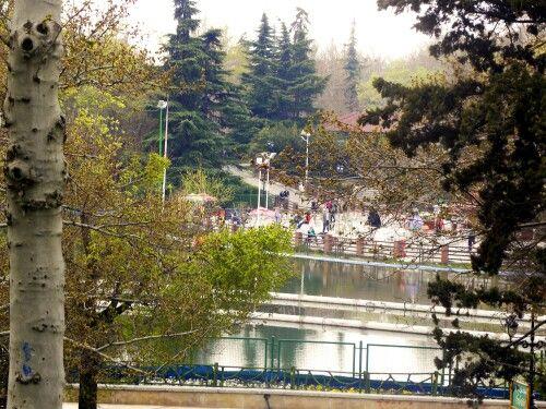 پارک ملت،تهران،بهار 93  Photo by: Maryam Azadeh