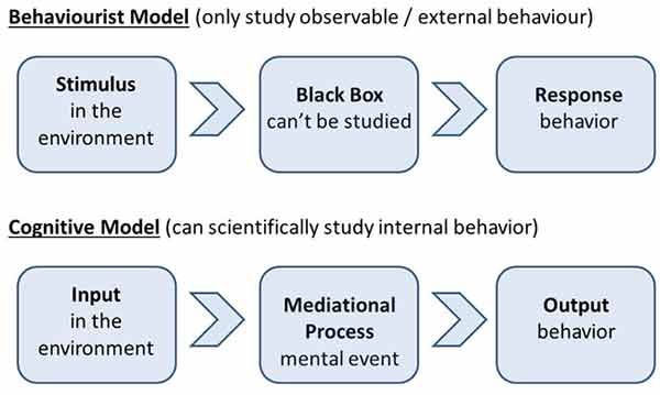 Mediational Processed In Cognitive Psychology Learning Theory