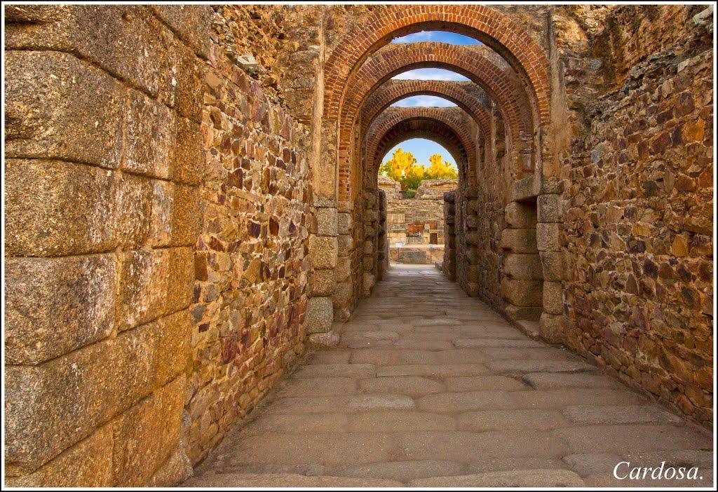 Ruinas en Merida (España)Dos mil años contemplan esas piedras y aún estan vivas.