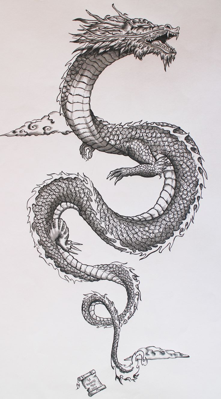 Dragon Tattoo  300+ Pictures is part of Chinese dragon tattoos -