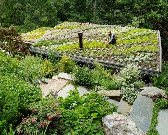 Landscape Vegetable Garden Design Photos Design, Pictures, Remodel, Decor and Ideas - page 2