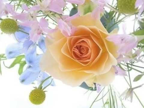 Gheorghe zamfir annies song gheorghe zamfir master of panpipes gheorghe zamfir annies song beautiful flowers mightylinksfo Images