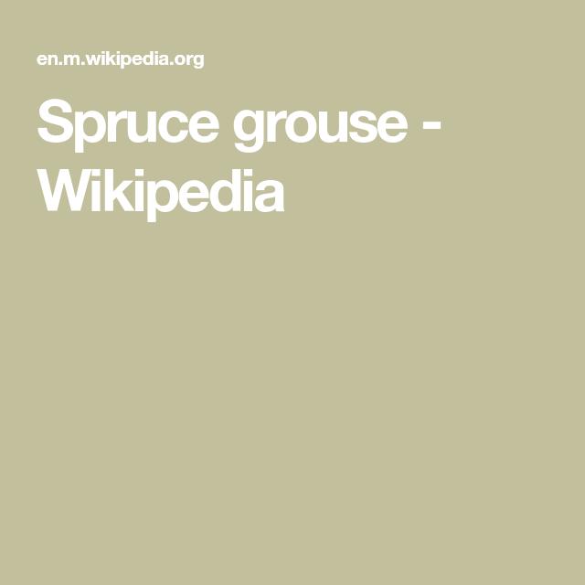 Spruce grouse - Wikipedia